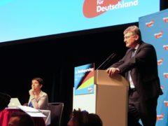 Jörg Meuthen , AfD (Wikimedia.org)