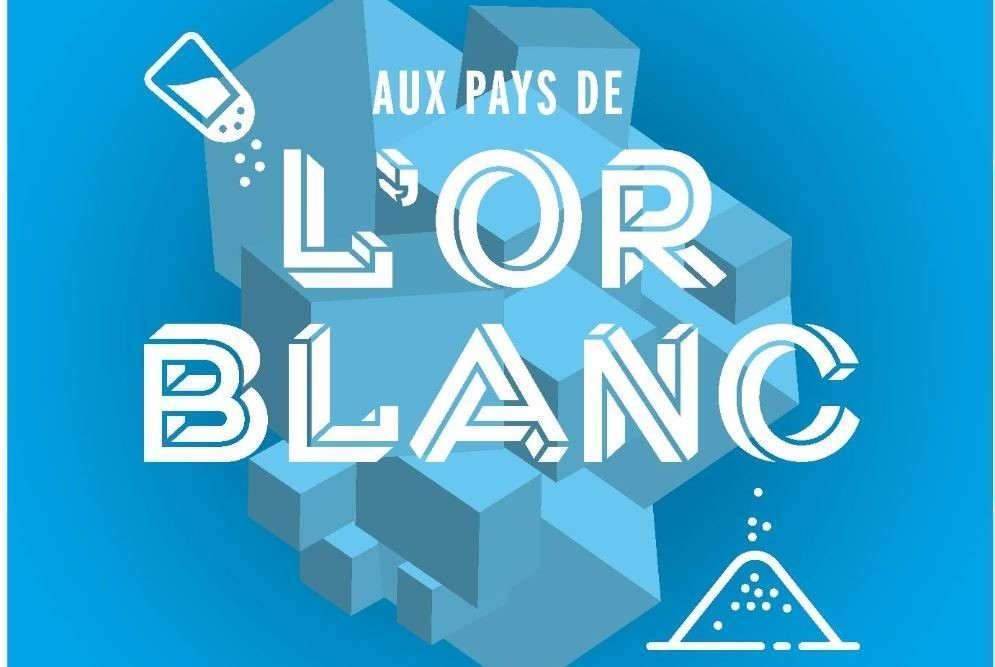 Aux Pays de l'Or blanc (Université de Lorraine)
