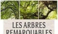 Les arbres remarquables, un fil de Georges Feterman