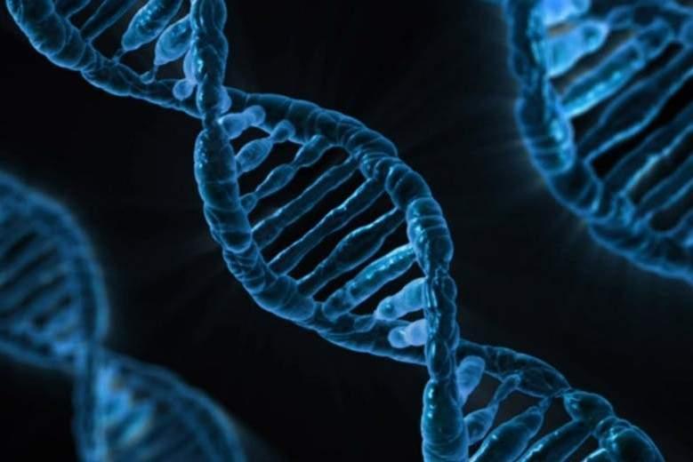 Que valent les tests ADN pour décrire nos origines ?