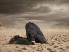 L'effet « autruche » fausse très souvent la prise de décisions. Shutterstock