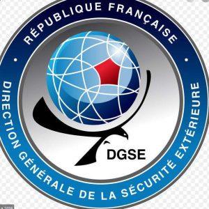DGSE, logo, Wikipédia