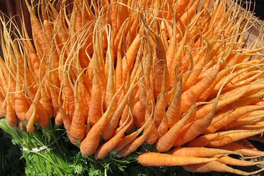 Carottes fraîches sur un marché (PxHere)