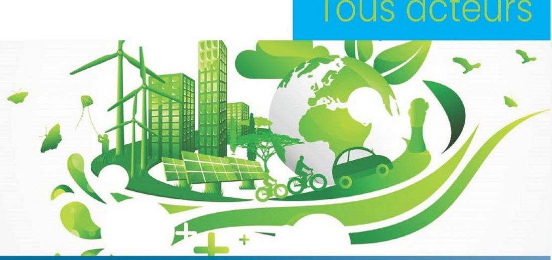 Transition écologique et solidaire (Ceseer Grand Est)
