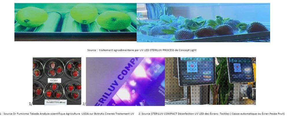 Source : traitement agroalimentaire des fruits par UV LED STERILUV PROCESS de Concept Light