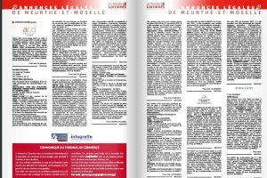 Annonces légales (capture Tablettes Lorraines)