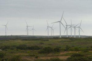 un parc éolien à Aumelas (34) photo Simon Popy)2