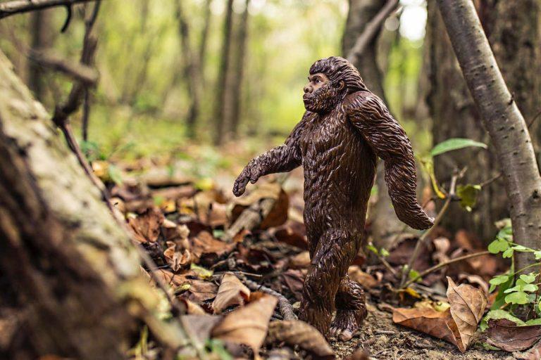 L'homme de Néandertal, notre ancêtre (Pexels)