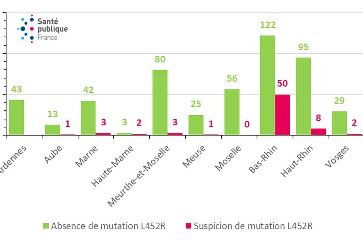 Nombre de prélèvements positifs à SARS-CoV-2 domiciliés dans le Grand Est criblés pour la mutation L452R portée par le variant delta. (Source : laboratoires de biologie médicale pratiquant des tests RT-PCR de criblage).