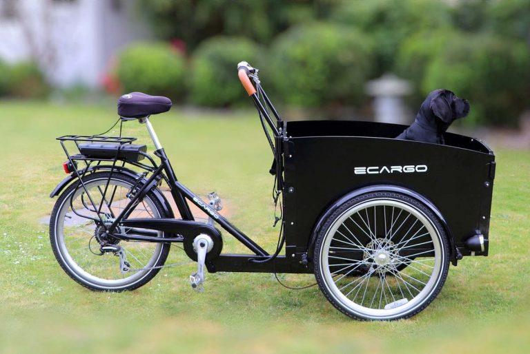 Vélo Cargo (Pixabay)