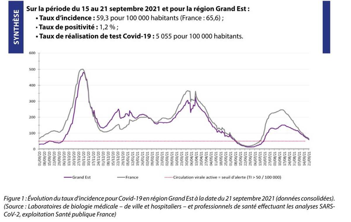 Circulation virale dans le Grand Est (santé publique France)
