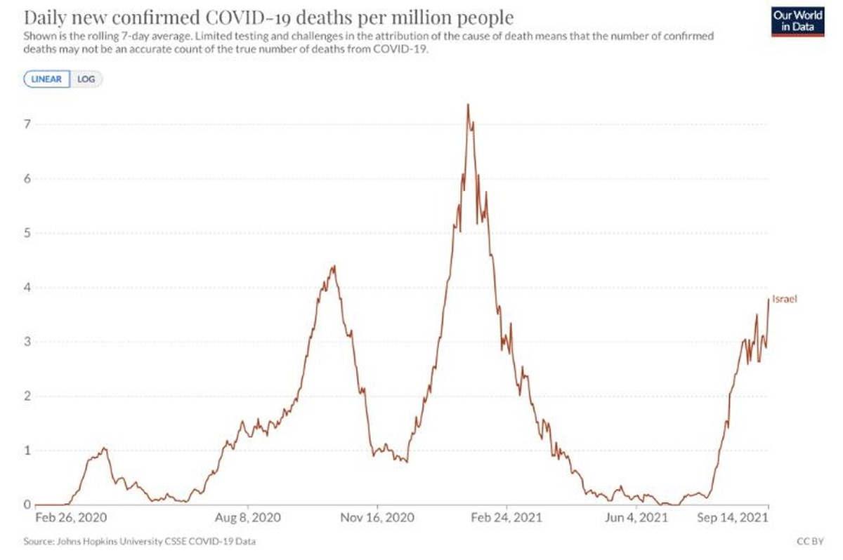 Cas de mortalité covid